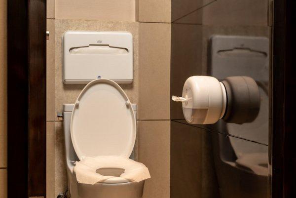 安心如厕 由维达多康守护