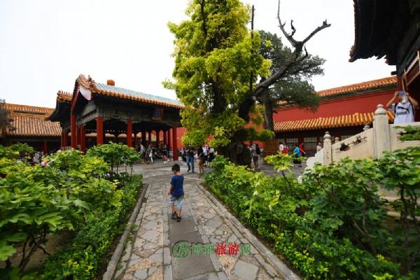 故宫博物院